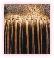 microlink extensions where can i buy micro link hair extensions hair human wavy