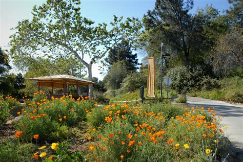 Claremont Botanical Gardens California Free Admission Day Rancho Santa Botanic Garden Discover Claremont Discover