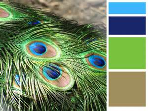 peacock colors two southern grits daily creativity themes schemes