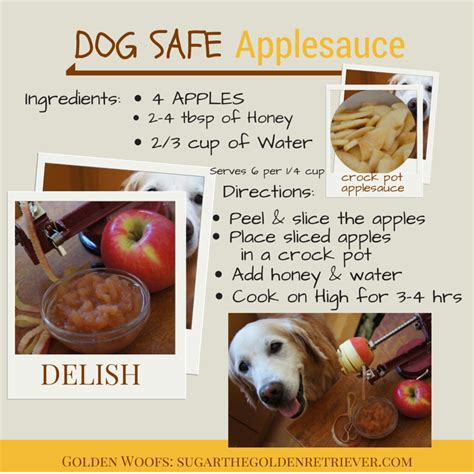 can dogs eat applesauce what to add to applesauce