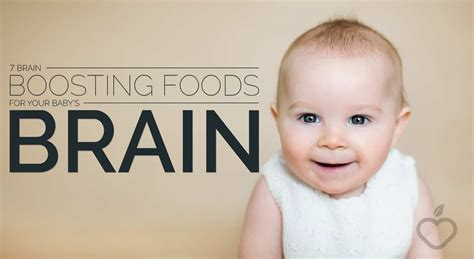 7 Brain Boosting For Your by 7 Brain Boosting Boosting Foods For Your Baby S Brain