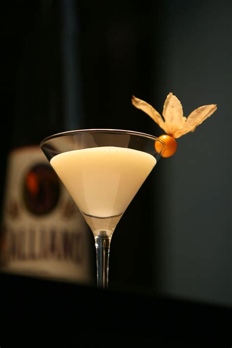 martini fancy fancy cocktail garnishes www pixshark com images