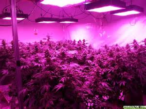 led grow le mars hydro led grow light discussion page 387