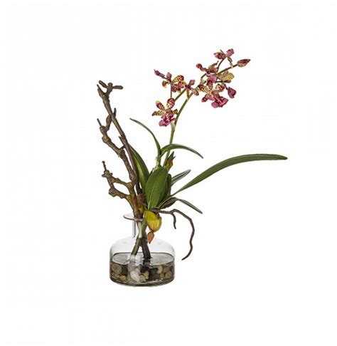 Teaset Orchid ideas interiors accessories