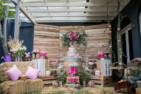 rustic themed events pretty rustic farm party kids party space