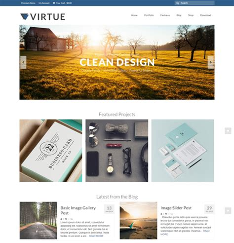 theme virtue blog chia sẻ những best wordpress themes 2015