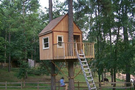 buy tree house treehouse ideas on pinterest treehouse tree houses and tree house plans