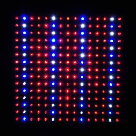 Review Of Ledwholesalers 2501quad Blue Red Orange White Ledwholesalers Led Lights