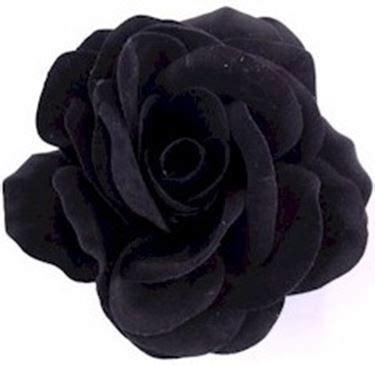 rosa nera fiore rosa nera significato significato dei fiori rosa nera