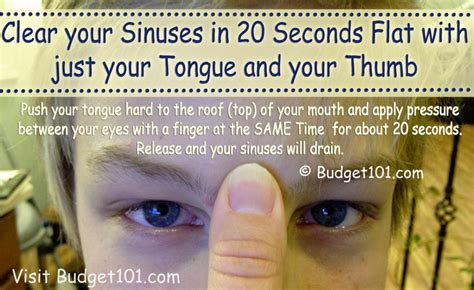 relieve sinus pressure instantly home remedies