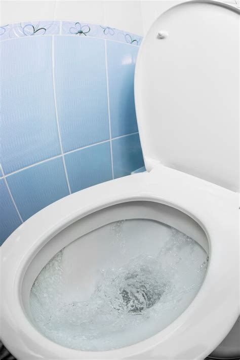 water arm toilet how to raise the water level in a toilet tank ebay