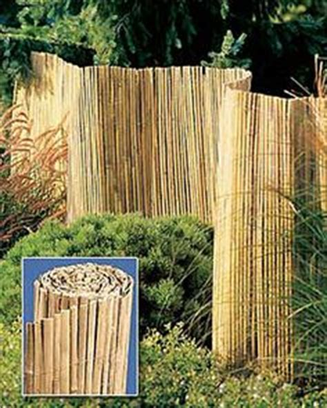 how to cover up mud in backyard bamboo on pinterest bamboo structure bamboo and bamboo fence