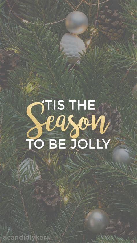 tis  season   jollychristmas tree pine background wallpaper