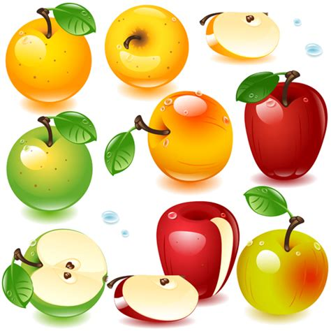 berry design realistic fruits and berry design vector 02 free free