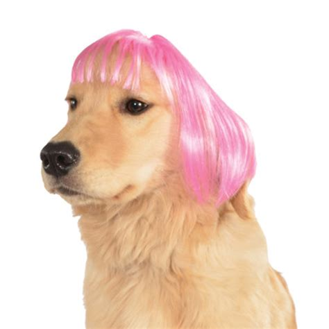 With Wig On by Wigs For Dogs Wigs By Unique
