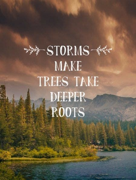 tree quotes storms make trees take deeper roots typography picture