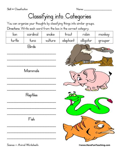 Animal Classification Worksheet by Animal Classification Worksheet Teaching