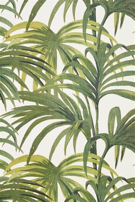 printable pictures of palm leaves palm leaf print girl for granted
