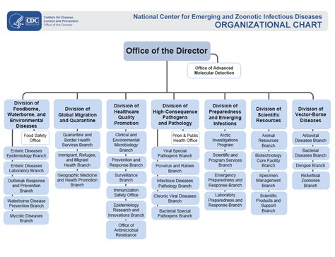 florida state government organizational chart 23 lastest address of organization in kentucky dototday com