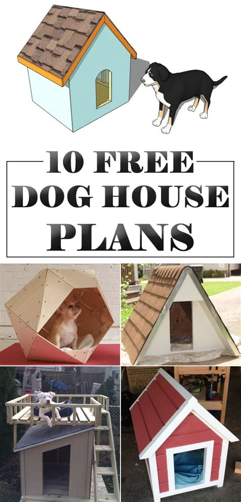 10 amazing diy houses with free plans