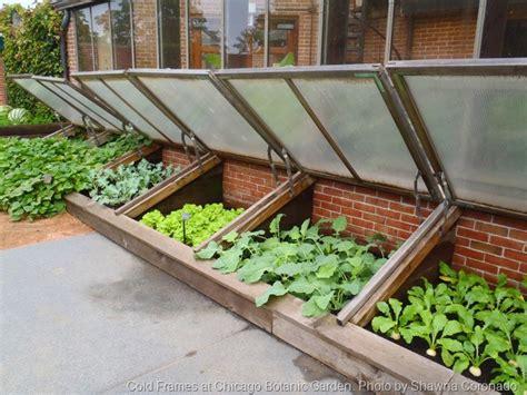 exle winter gardens 12 great drought tolerant plants