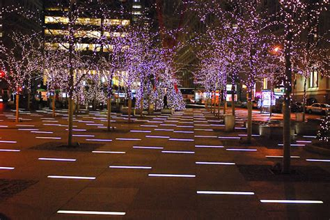 nyc nyc zuccotti park holiday lights