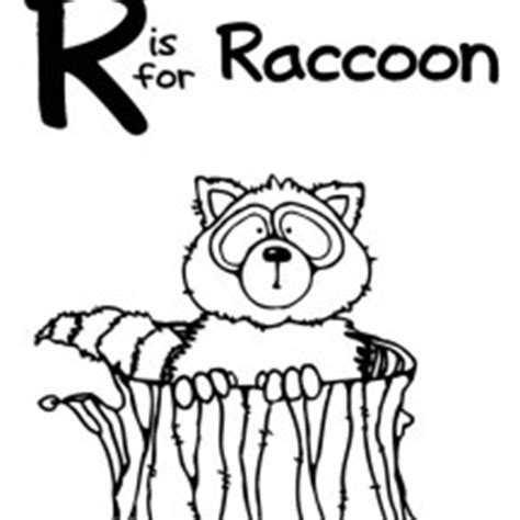 raccoons stole my baby jesus books raccoon netart