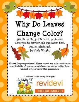 why do the leaves change colors why do leaves change color elementary science experiment