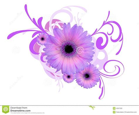 gerbera daisy background stock photos image 4567233
