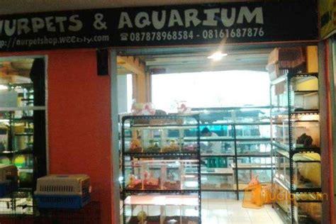 Kandang Kucing Cibinong pet shop reptil mamalia dan burung kontrak