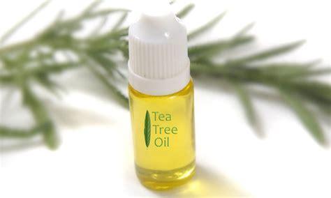 how does tea tree oil helps ingrown hairs home remedies for ingrown hair apple cider vinegar