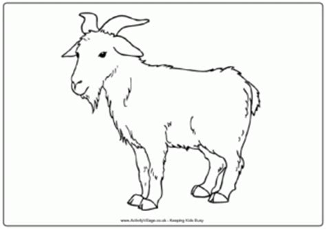 realistic goat coloring page farm animal colouring pages for kids