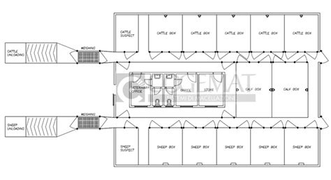 layout of modern slaughter house weighing scales for animals goat sheep pig pens
