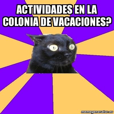 Anxiety Cat Memes - meme anxiety cat actividades en la colonia de vacaciones