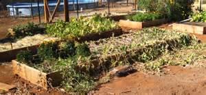 Urban Kitchen Cottage Grove Oregon - vegetable garden magazine zonal property