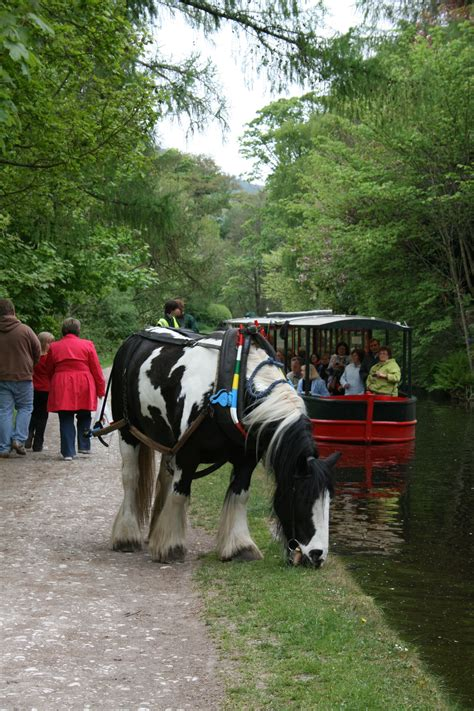 wales to ireland by boat horse towed canal boat llangollen canal wales 12