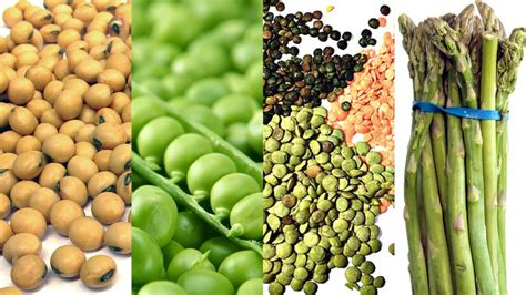 protein rich vegetables 8 high protein vegetables