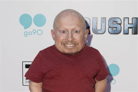 Mini Me Returns To Rehab by Powers Mini Me Actor Verne Troyer Checks Into Rehab