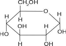 carbohydrates with 5 carbon atoms what are biological molecules