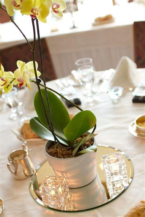 orchids centerpieces wedding ideas 17 best ideas about orchid centerpieces on vases wedding wedding