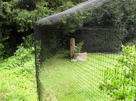 katzennetz garten garten mit katzennetz katzengehege system katzennetz profi