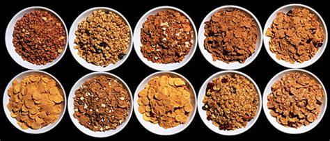 7 whole grain puffs the breakfast manifesto adam platt tastes 100 cereals