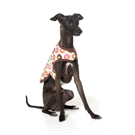 Wrap Addicts Go Nuts by Fuzzyard Wrap Vest Go Nuts Pet Circle