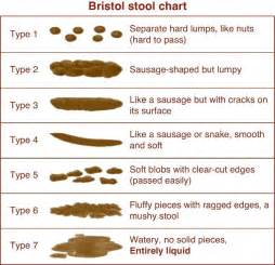 bristol stuhl skala 25 best ideas about bristol stool scale on