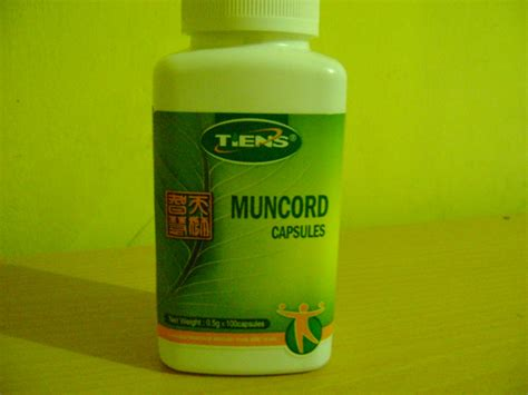 Tianshi Muncord Capsules alternatives medicine cordyceps mycelium from tiens are