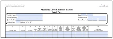 Medicare Credit Balance Form Tips On Completing A Credit Balance Report Form Cms 838