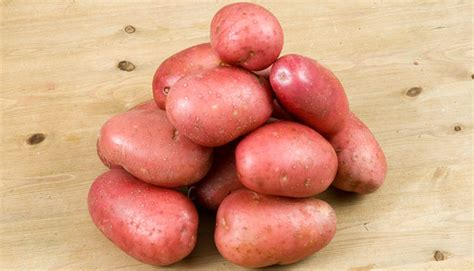 best type of potatoes for roasting types of potatoes wisconsin potatoes
