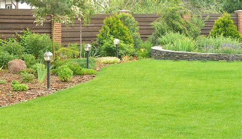 eliminare le talpe dal giardino come eliminare le talpe se al