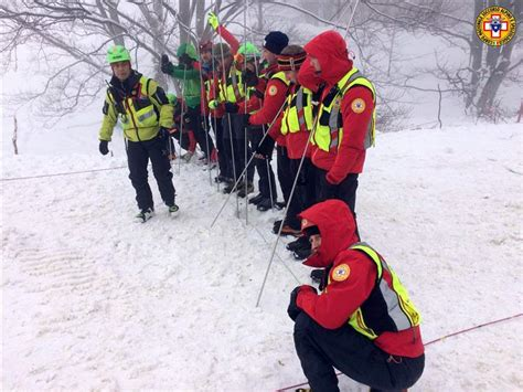 italian avalanche puppies 3 dogs give italy avalanche rescuers but 22 missing the blade