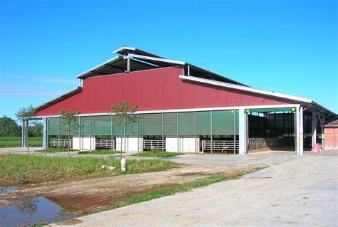 capannoni it capannoni prefabbricati per bovini da latte 15 miglioranza